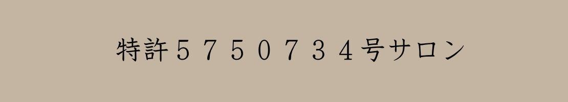 特許5750734-サロン・ド・フェルメール
